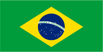 brazil - Exhibiting Options