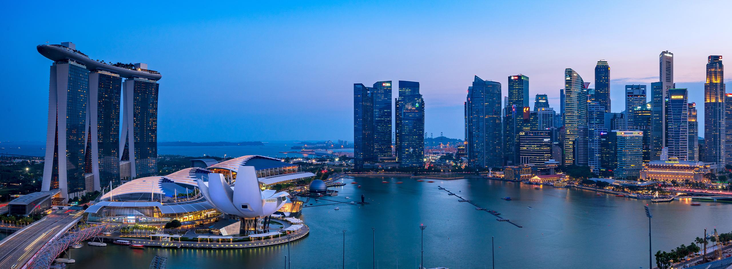 Marina Bay Sands Landscape - About IDEM